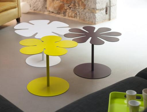 table BORA_MG